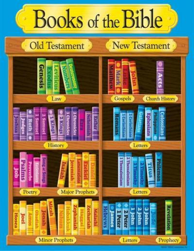 Books of the Bible bookshelf